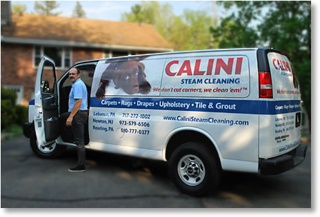 Calini Steam Cleaning is Ready to Serve You
